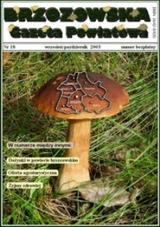 Brzozowska Gazeta Powiatowa. 2003, nr 18 (wrzesień/październik)