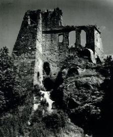 [Odrzykoń pow. krośnieński. Ruiny Zamku Kamieniec nr 3] [Fotografia]