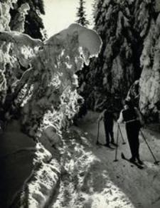 [Bieszczady zimą] [Fotografia]